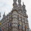 Gothic Town Hall in Leuven, Belgium. — Stock Photo