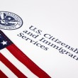 U.S. Department of Homeland Security Logo — Stock Photo #11584296