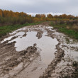 Puddles on the dirt road — Stock Photo