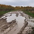 Stock Photo: Puddles on the dirt road