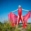 Scarlet gown - Stockfoto