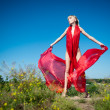 Scarlet gown — Stock Photo