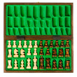 Wooden chess pieces — Stock Photo #12208078