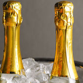 Bottles in ice — Stock Photo