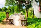 Tea party nel parco — Foto Stock