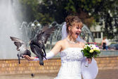 Beautiful bride with a pigeons — Stockfoto