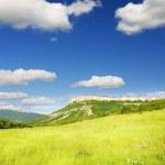 Green meadow in mountain. — Stock Photo