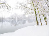Winter landscape with the rive — Stock Photo