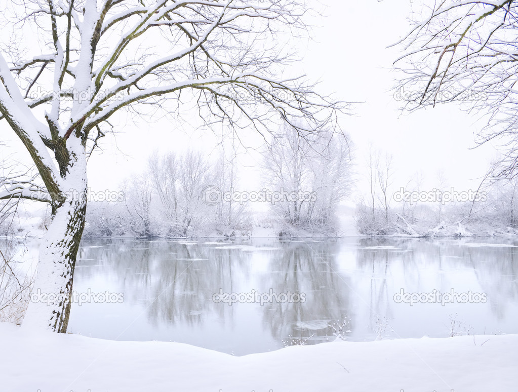 Winter landscape of frosted river — Stock Photo #12405516