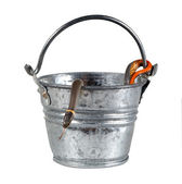 The Prairie Ring-necked Snake (D. p. Arnyi) in an iron bucket — Stock Photo