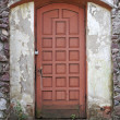 Grungy door - Stock Photo