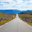 Road landscape — Stockfoto
