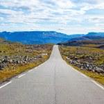 Road landskap — Stockfoto