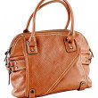 Image of a female handbag eligantnoy — 图库照片