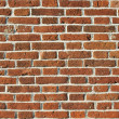 Old brick wall — Stock Photo #12291358