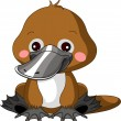 Fun zoo. Platypus — Stock Vector