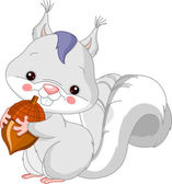Fun zoo. White squirrel — Stock Vector