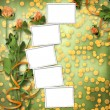 Grunge paper for congratulation with bunch of clover — Stock Photo #11066041