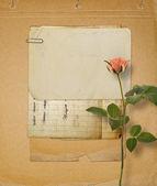 Grunge achtergrond voor heilwens met mooie roos — Stockfoto