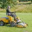 Stock Photo: Machine grass trim