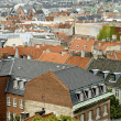 Copenhagen roofs — Stock Photo