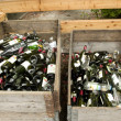 Stock Photo: Recicle bottles