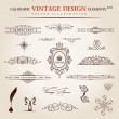 Vector set. Calligraphic vintage elements and page decoration pr — Vector de stock #11680933