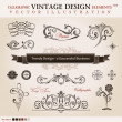 Vector set classic. Calligraphic design elements and book decora — Stock Vector