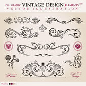 Vector set classic. Calligraphic design elements ornament decora — Vecteur