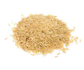 Brown Rice Isolated on White Background — Stock Photo