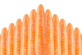 Carrots on White Background — Stock Photo