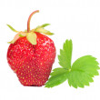 Strawberry with Green Leaf — Stock Photo #11828980