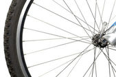 Bicycle Wheel on White Background — Stock Photo