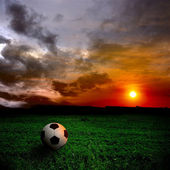 Ball on the field — Stock Photo