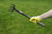 Hand in a glove holding rake — Stock Photo