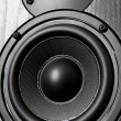 Loudspeaker - Stockfoto