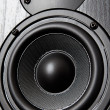 Royalty-Free Stock Photo: Loudspeaker