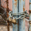 Padlock and metal gate - Foto de Stock