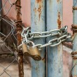 Padlock and metal gate - Stock Photo