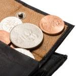cents en sac à main — Photo
