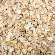 Oats — Stock Photo