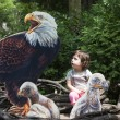Girl at the zoo — Stock Photo