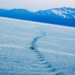Amazing Alaska — Stock Photo #11296419