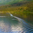 Mountain Alaska — Stock Photo #11296440