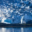 Alaska's Glacier Bay — Photo