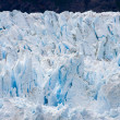 Alaska's Glacier Bay — Stock Photo #11296496