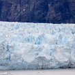 Alaska's Glacier Bay — Stock Photo
