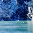 Stock Photo: Alaska's Glacier Bay