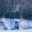 Alaska's Glacier Bay — Photo #11296524