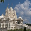The BAPS Swaminarayan Sanstha Shri Swaminarayan Mandir, Atlanta — Stock Photo #11297464